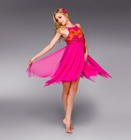 2018 New Ballet dress Adult ballet yarn costumes swan dance dress feather Ballet tutu sequins professional dress B-2405