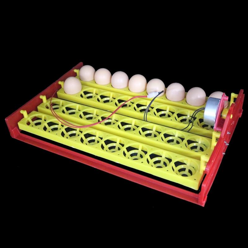 32 კვერცხის ჩართვა უჯრა ავტომატური ინკუბატორის კვერცხის უჯრა 110v / 220v / 12v ქათმის იხვის კვერცხების უჯრა 28 X 43 სმ 8 ხვრელები