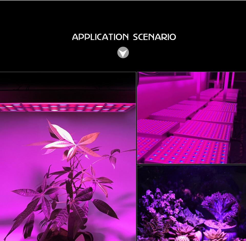 LED Plant Grow Light Full Spectrum 45W AC 85-265V Phyto Lamp for Plants Flower Seedlings 144LEDs Indoor Grow Light Hanger Kit (13)