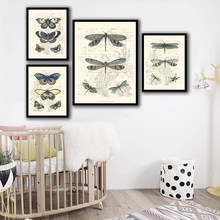 Nordic Watercolor Picture Wall Art Canvas Painting Butterfly Dragonfly Animal Posters And HD Prints Abstract Wedding Decoration(China)