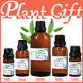 Free shopping100% pure plant essential oils Litsea Cubeba oil Antidepressant Antibacterial Convergence