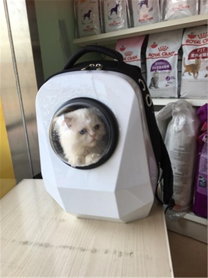 pet bag backpack12