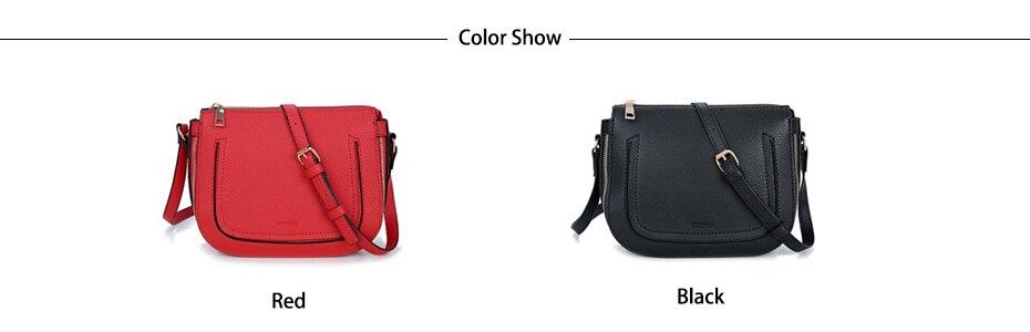 03 Color Show