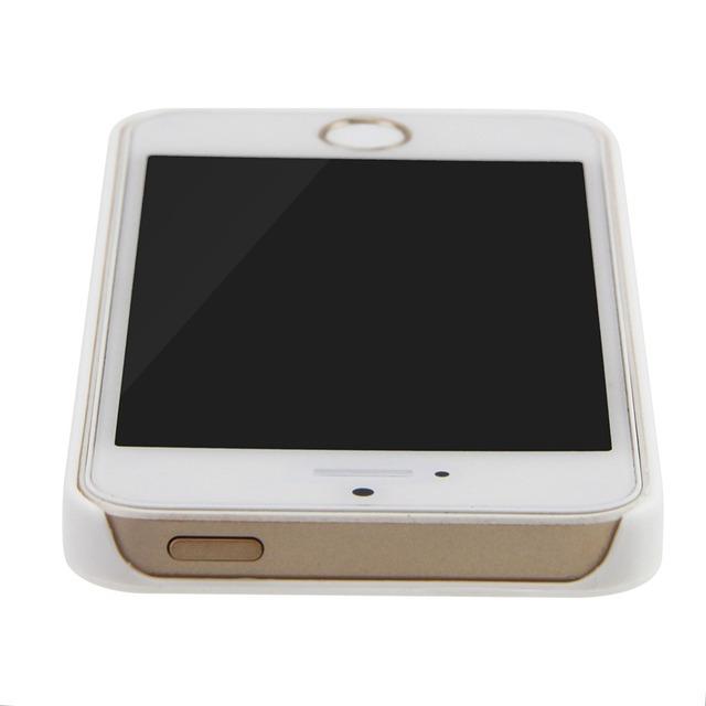 Black & White iPhone Dachshund Case