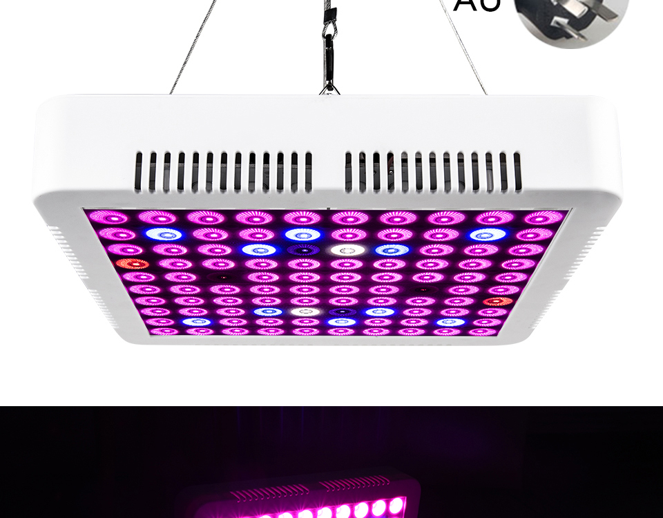 300W Full Spectrum LED Plant Grow Light Lamp For Plant Indoor Nursery Flower Fruit Veg Hydroponics System Grow Tent Fitolampy (18)