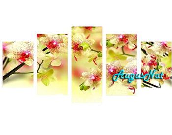 multi pictures combination moth orchid diamond painting kit full drill diamond sticker flower wall art mosaic rhinestone pasted
