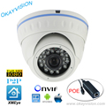 ONVIF IR Night Vision H.264 2MP Full HD 1080P HD-IP P2P DC48V POE dome cameras XMEye APP for Smart Phone