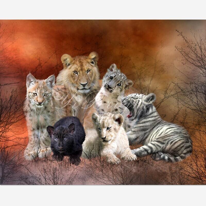 5d Diamante Ricamo Young & Wild-PWD tigre animale Pittura Diamante Gufo Punto Croce Bella Ricamo Decorazioni Per La Casa halfmade LRR