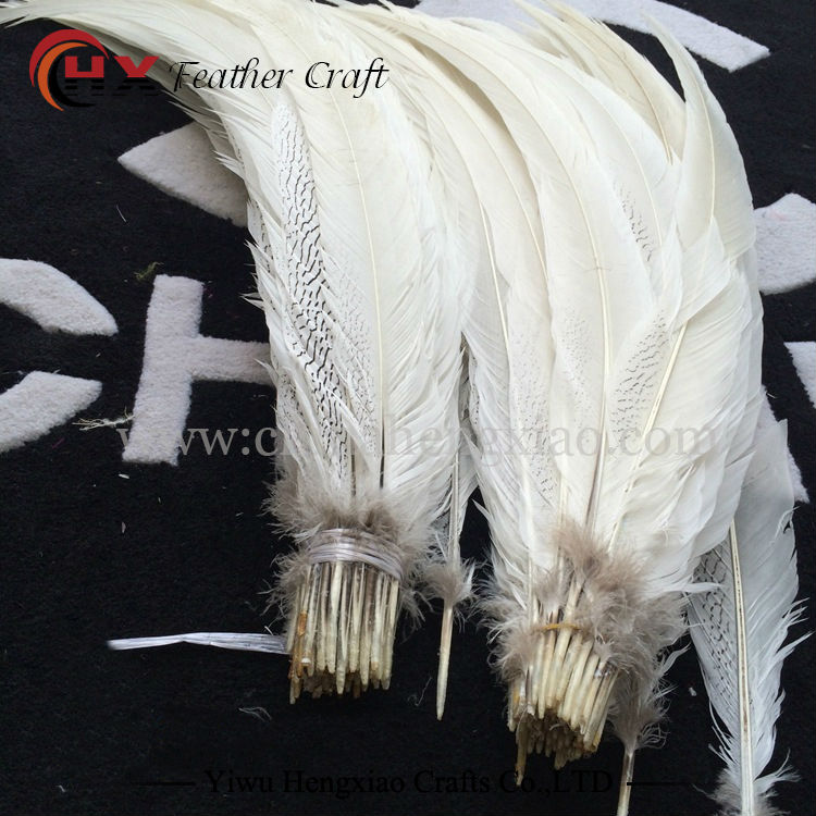 11 color Beautiful Natural Hen Pheasant Wing Feathers plumas faisan colores view