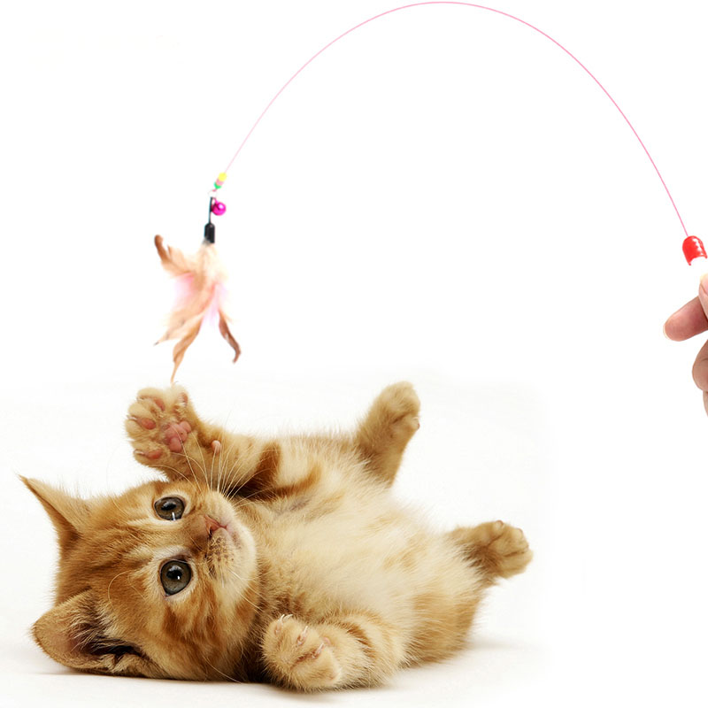 Hot 1pc pet cat toy Cute Design Steel Wire Feather Teaser Wand Plastic Toy for cats Color Multi Products For pet Product
