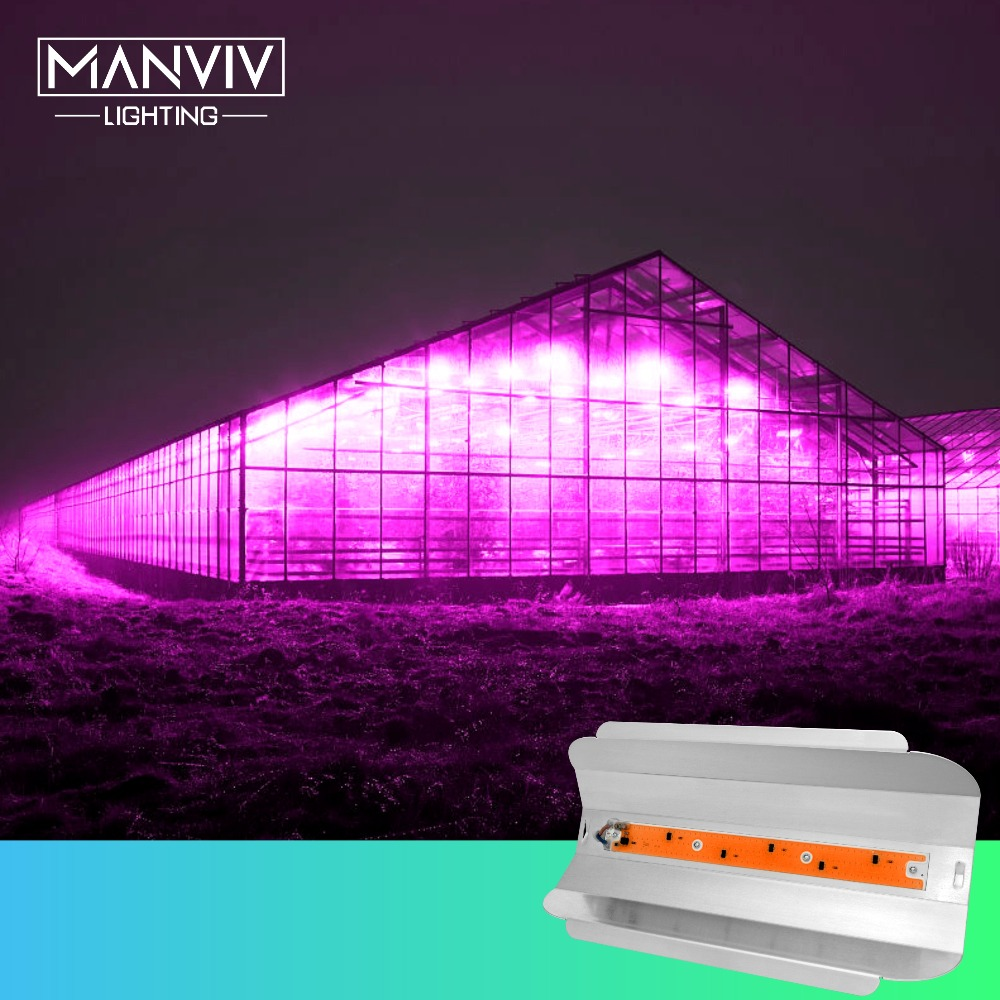 Phyto LED 80W 50W 30W Growing Lamp AC110 220V IP67 Floodlight For Greenhouse Flower Vegetable Hydroponics Plants Seeding Growing