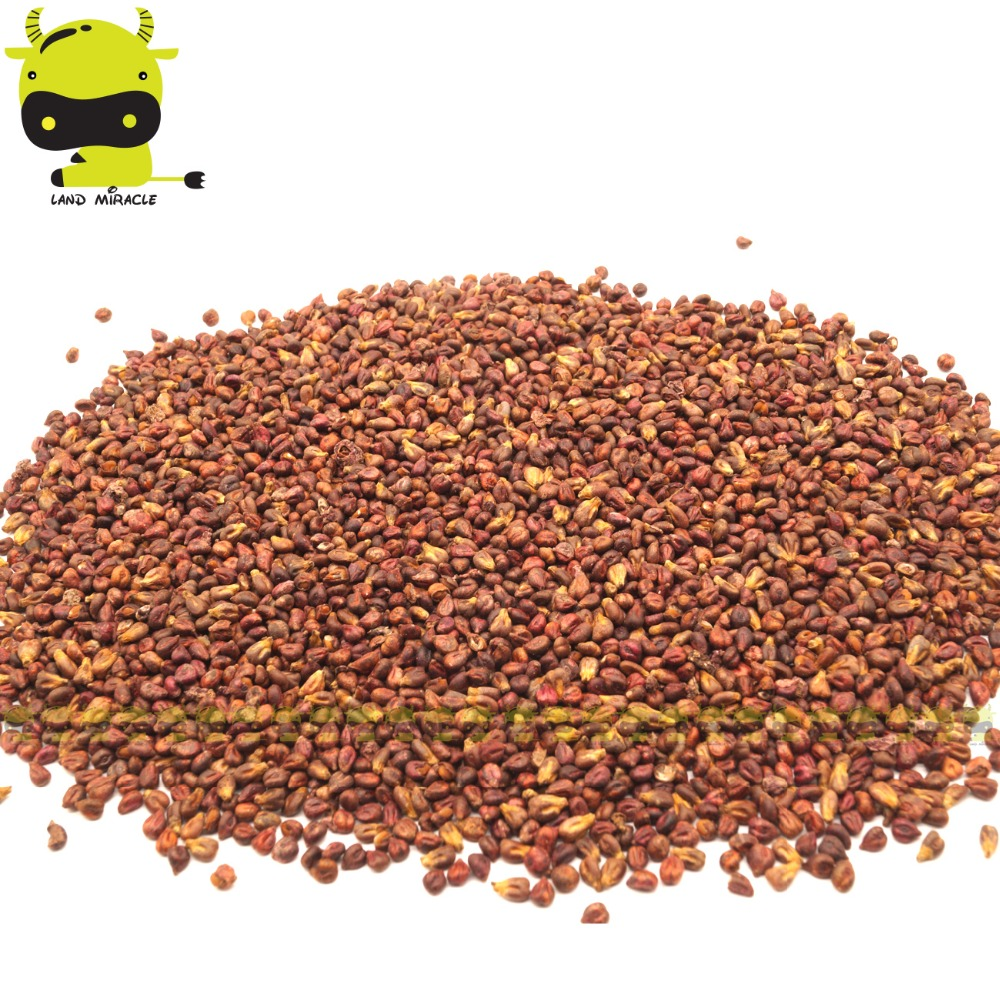 Patos Manor Black Banana Grape Seed, 20 Seeds/Pack, NON GMO Edible Fruit Vitis Vinifera Good taste, Excellent quality