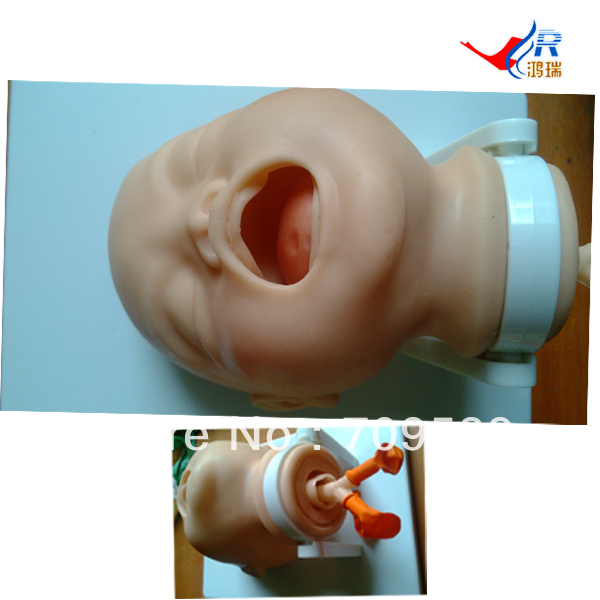 цена ISO Economic Newborn Baby Intubation Training Model, Intubation trainer