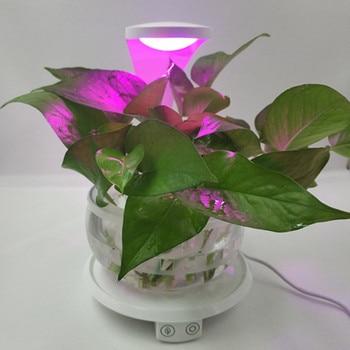 Luce Notturna Fiore | HZFCEW LED Smart Touch L'illuminazione Crescita Delle Piante, Fiori E Di Giardinaggio Luci, Luce Di Notte, E Piante Riempiono Di Luce, Lampada Da Ufficio