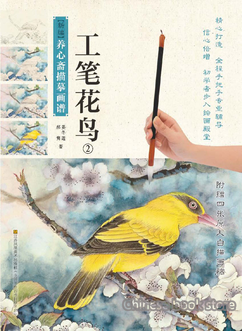 Chinese traditional  coloring ink painting book for beginner to copy Chinese gongbi textbook flower and bird drawing paintings(China)