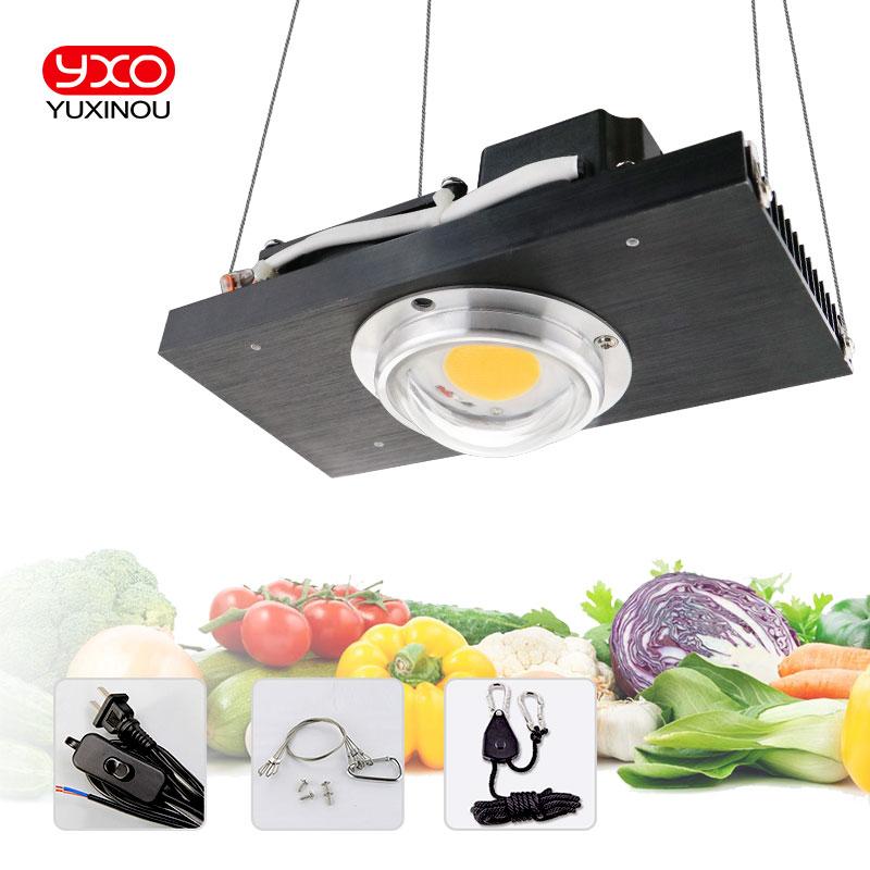 100 W 200 W CREE CXB3590 COB LED pousser la lumière 200 W citoyen LED plante pousser lampe pour tente intérieure serres hydroponique plante