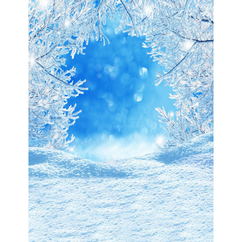 Customize vinyl cloth print snow view photo studio backgrounds for kids portrait photography photographic backdrops S-2473