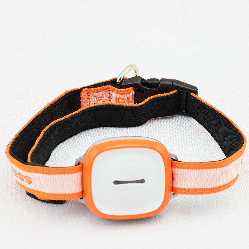 Fonction de SOS de traqueur de positionnement de GPS GSM Wifi de traqueur de GPS de voiture d'animal familier imperméable avec le dispositif de localisation de GPS d'animal familier de nuit de clignotant de LED