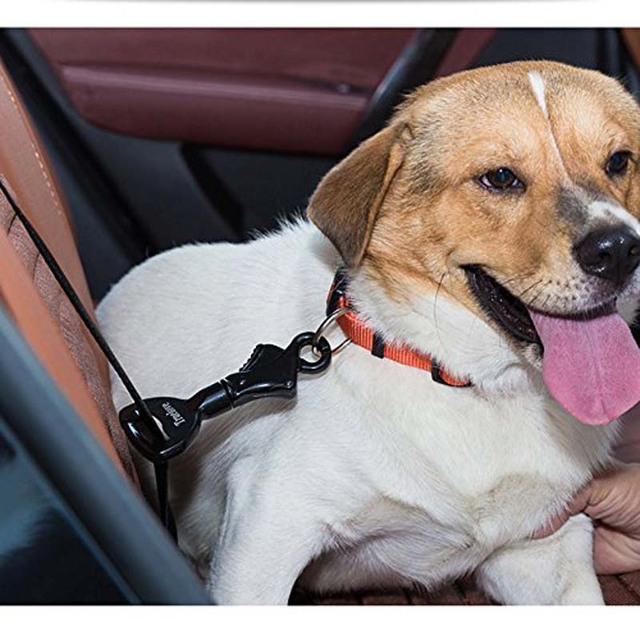 Truelove Vehicle Car Pet Dog Seat Belt Lock Harness Collar Clip Safety Lighweight Durable Aluminimum Alloy Dog Supplies Dropship 4