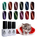 1 Bottle BORN PRETTY 5ml Magnetic Cat Eyes Gel Soak Off UV Gel Polish No Black Base Needed