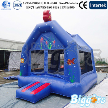 1013 Inflatable Bouncer (1)