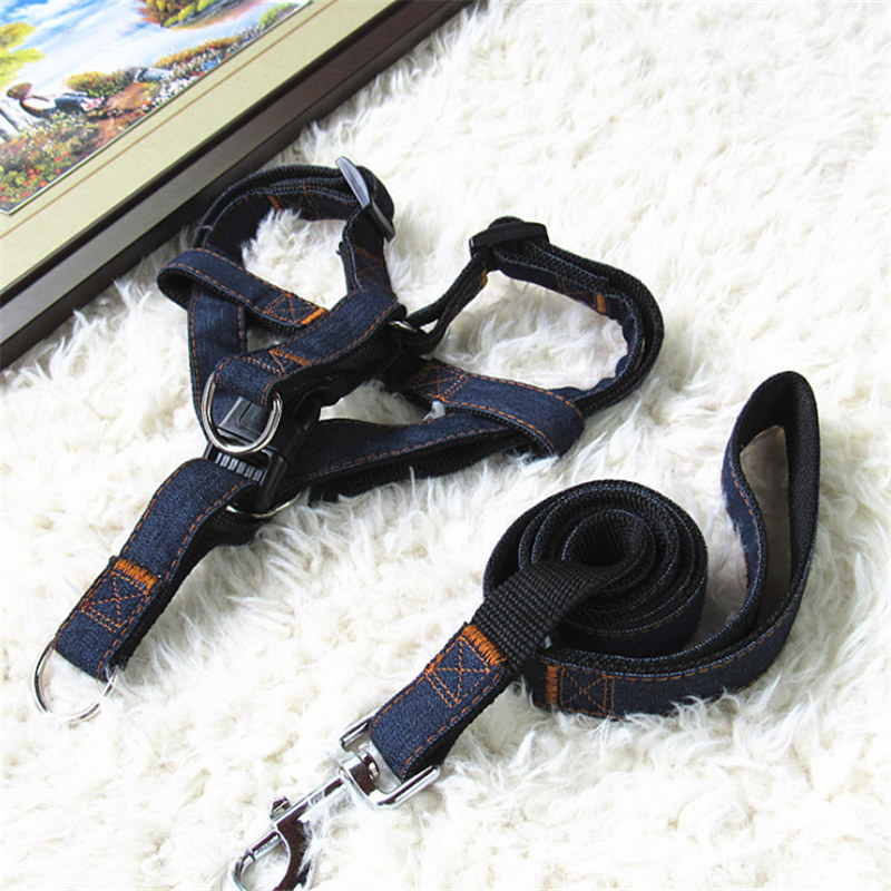 Cute Angel Pet Dog Harness Set Leads For Small Dogs Cats Designer Wing breast band Dog collars leashes Pet dog leashes in Leashes from Home Garden
