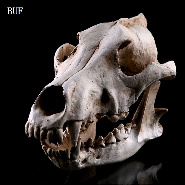 Buf Kerajinan Resin Halloween Dekorasi Serigala Tengkorak Patung