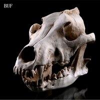 BUF Resin Craft Halloween Decoration lifelike Wolf Skull Statues Creative Decoration Skull Statue Sculpture Art Sketch Model