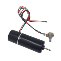 BLDC Motor High Speed 24V 5000Rpm Diameter 32mm Small Electric Brushless with Adjustable Speed