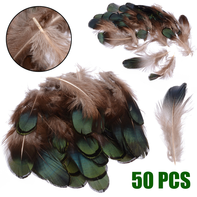 50pcs Natural Pheasant Feathers Tail Green Rooster Feathers for Crafts DIY Peacock Clothing Party Decorating Accessories