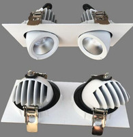 24W Dimmable LED Trunk Downlight COB Ceiling 2X12W Adjustable Recessed Indoor Light Double COB LED Downlight