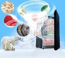 102l tipo vertical congeladores comercial/máquina de congelação do agregado familiar com grande capacidade congelador de gaveta de congelação rápida BD-102