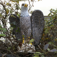 ZILIN NEW Product Blad Eagle Decoy Bird Scaring Eagle Decoy Garden Defence Home Decor
