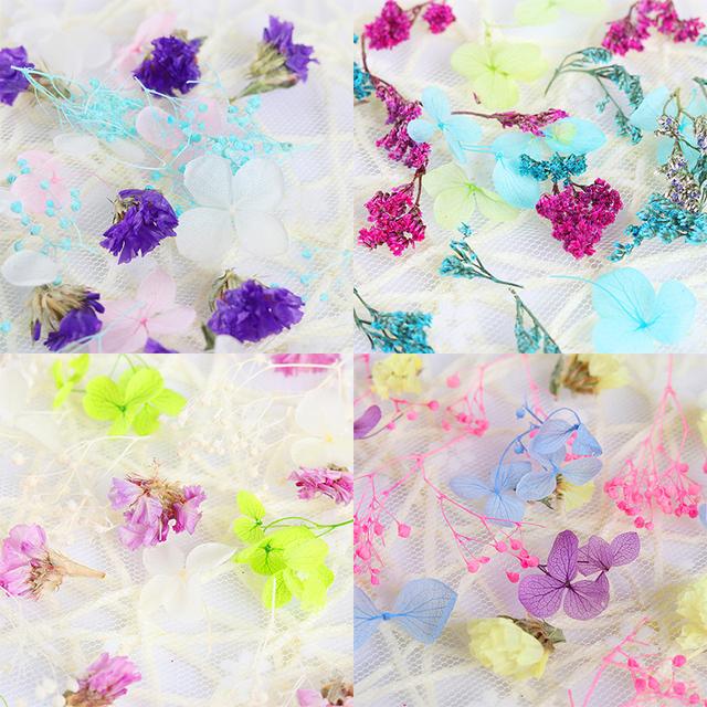 DIY Mixed Dried Flowers Nail Art