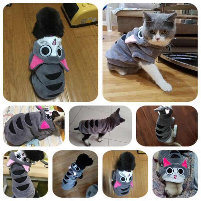 Comfort Coral Velvet Cat Clothes Cute Japanese Style Cat Clothing Warm Coat Kitten Pet Small Dog Puppy Costume in Autumn Winter 4