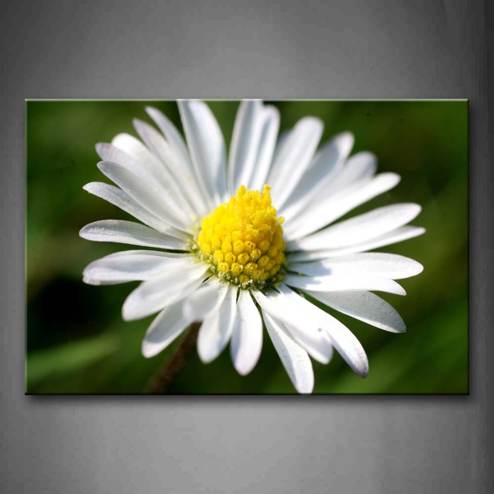 Framed Wall Art Pictures Daisy Heart Petals Canvas Print Flower Modern Posters With Wooden Frames For Living Room Decor