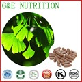 Pure Nature Ginkgo Biloba Extract Powder Capsule 500mg x 100pcs Free Shipping