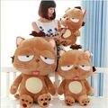 Горячая Продажа Южной кореи большой ленивый кот DINGA синьор солнце большое лицо кошка кукла плюшевые игрушки для детей лучший день рождения подарок