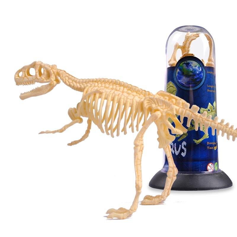 UKENN Dino fósil molde 18-26 cm longitud modelo de esqueleto de ...