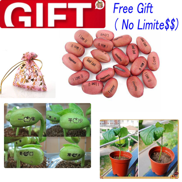 DO NOT BUY!!!!!! Free Gift,WE DONT SELL,IT IS FREE GIFT Only you buy goods we offer we do not sell