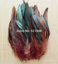 50 pçs cor marrom fofo moda faisão galo pena 12.5-20cm franja plumagem casa festa decoração diy