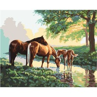 Digital DIY Oil Painting By Numbers Animals Horses Wall Decor Hand Painted Oil Painting Coloring By