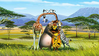 Cartoon african Jungle Safari Animal Giraffe Zebra Lion Tree Mountain background Computer print party backdrop