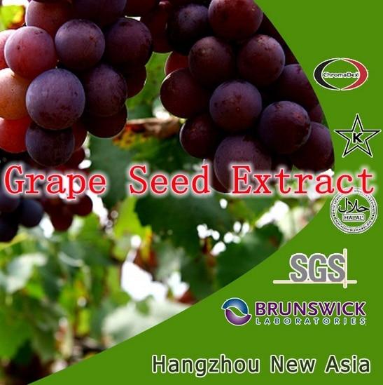ФОТО 250g Grape Seed Extract pure powder OPC antioxidant 8.8oz, rich of polyphenol and proanthocyanidins