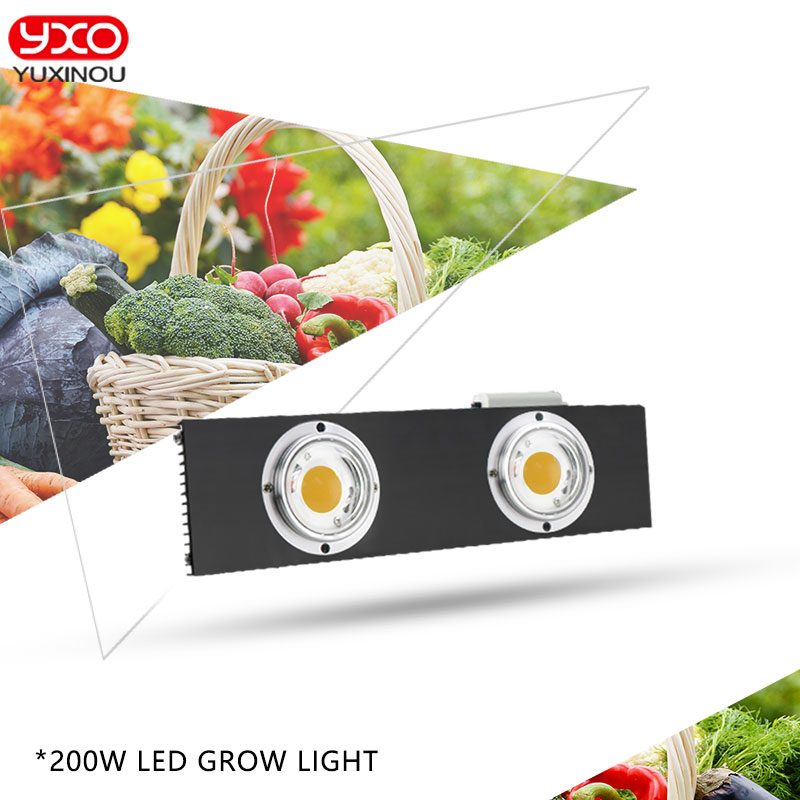CREE CXB3590 200W 36000LM 3500K 5000K Dimmable COB LED Grow Light Full Spectrum Growing Lamp Indoor