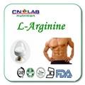 500 г/лот высокое качество 99% Л Аргинин для мышечной силы быстрая доставка по всему миру