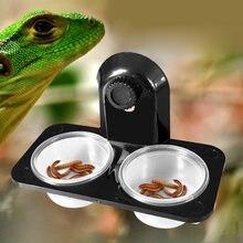 1 pçs tanque réptil inseto aranha formigas ninho cobra gecko comida tigela de alimentação de água terrário reprodutores alimentadores caixa suprimentos para animais estimação