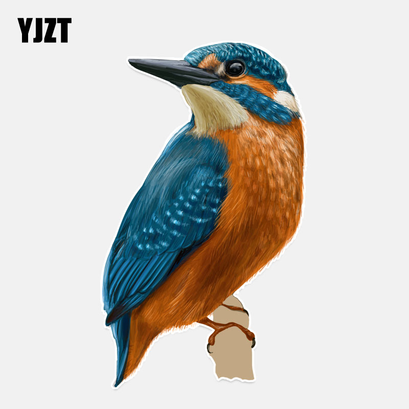 YJZT 9.3*15.9CM Coolest A Humming Bird Flight PVC Decor Car Sticker High Quality Colored Personalized 11A0220