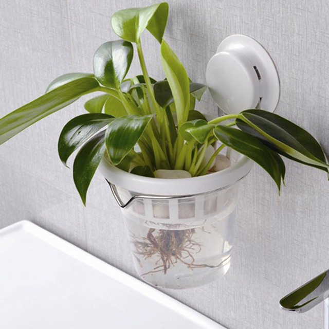 Beautiful Suction Cup Glue Decorative Flower Pot Hydroponics Plastic Pots For Plants  Maceteros Wall Mounted Bathroom Kitchen