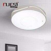 NJESI Living Room Ceiling Lighting Modern Led Ceiling Lamps Surface Mounts Round Shaped For Indoor Room